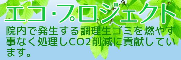 エコ・プロジェクト