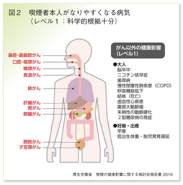 図2喫煙者本人がなりやすくなる病気